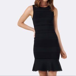🆕 NWOT Ever New Lola pointelle peplum dress